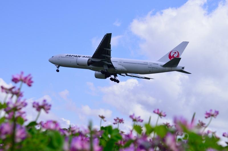 福岡空港 (22)