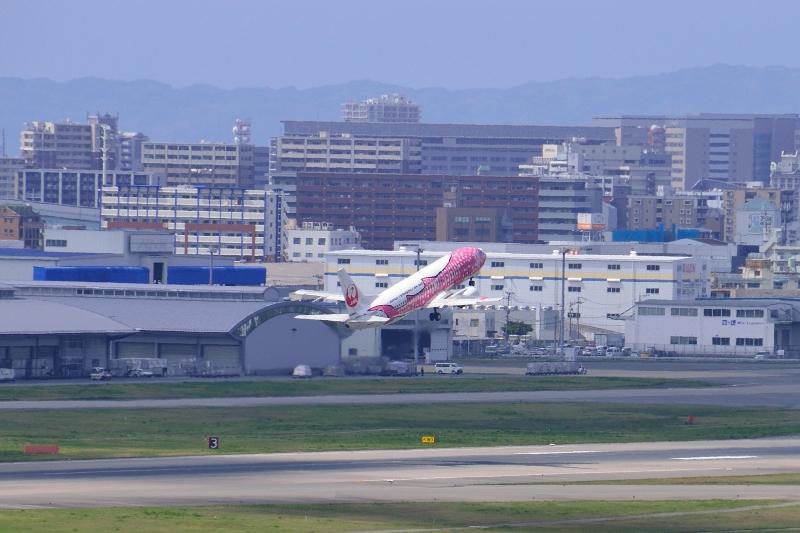 福岡空港 (37)