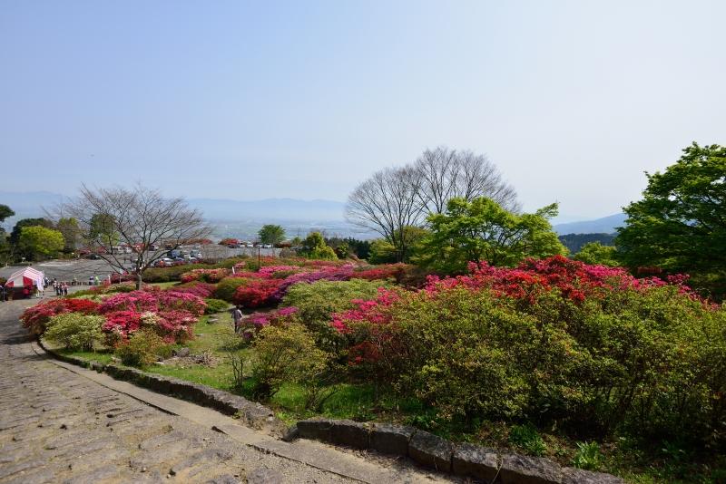 高良山 (5)