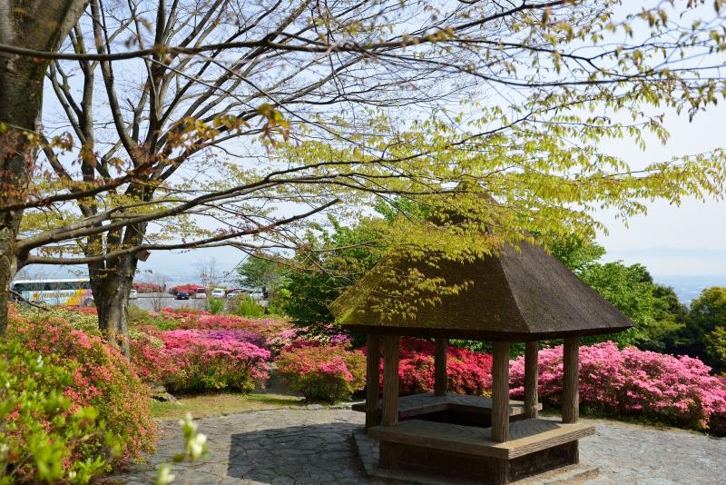 高良山 (11)