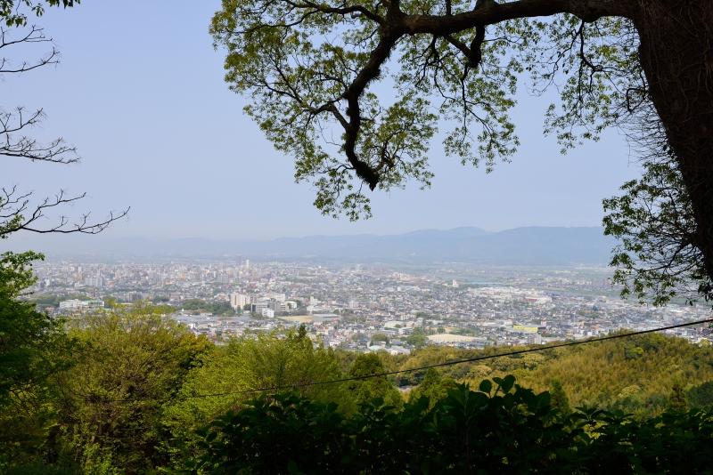 高良山 (17)