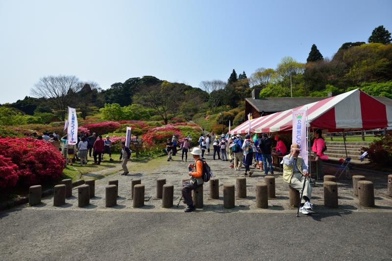 高良山 (14)