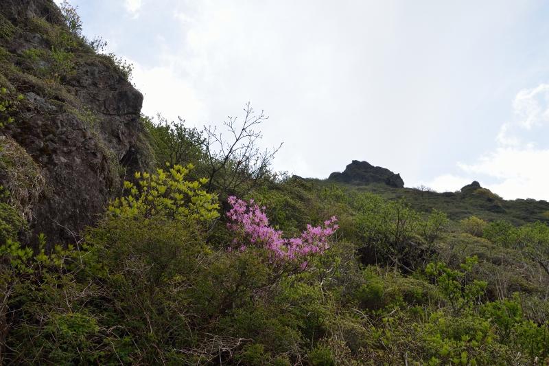 由布岳山開き (6)