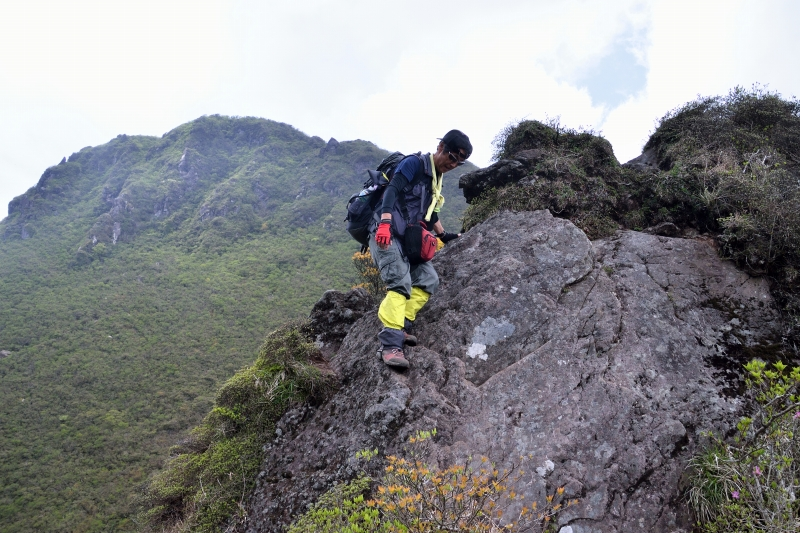 由布岳山開き (33)