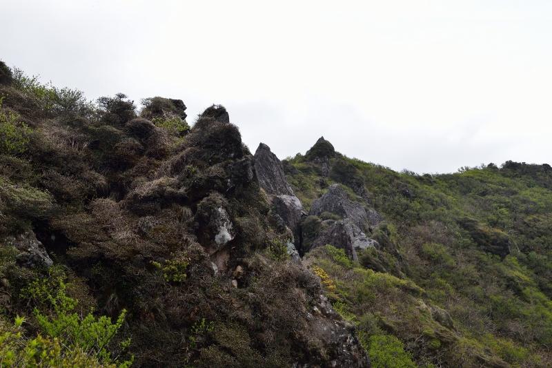由布岳山開き (44)