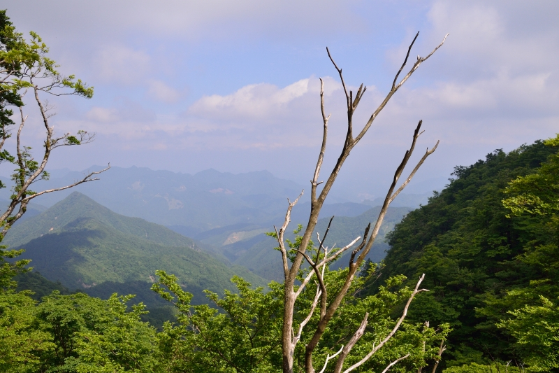 英彦山 (27)