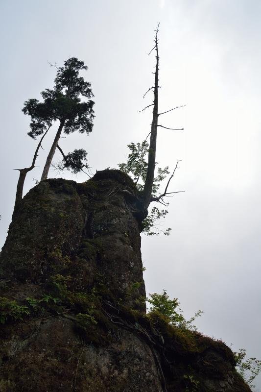 英彦山 (33)
