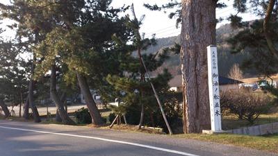 BRM125旧東海道松並木