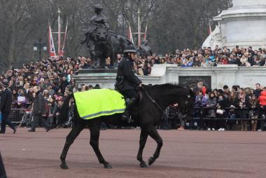 騎馬警官の乗馬も反射ベスト