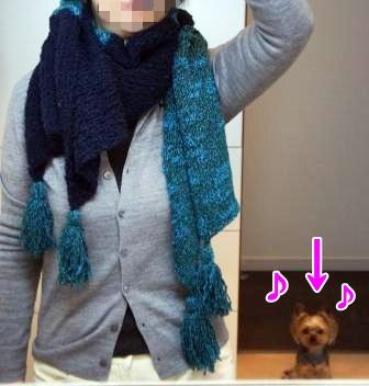0123太糸ストール-2