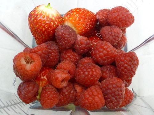 berry-03_20150331220411942.jpg
