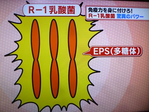 r1-02.jpg