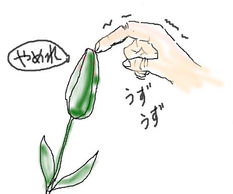 snap_namira229_20154093112[1]