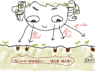snap_namira229_20156619586[1]