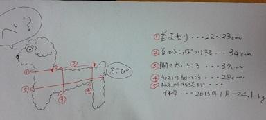 DVC00694.jpg