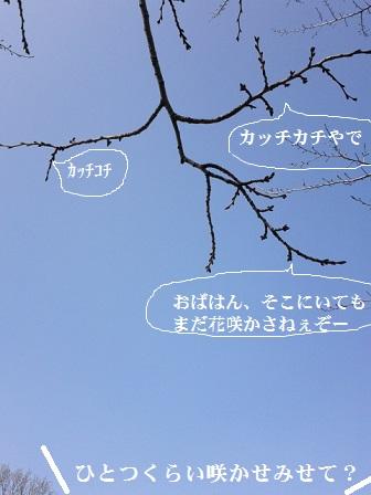 DVC00769.jpg