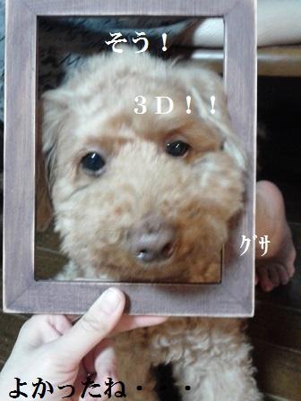 DVC00915.jpg