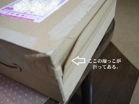 P1340351(1).jpg