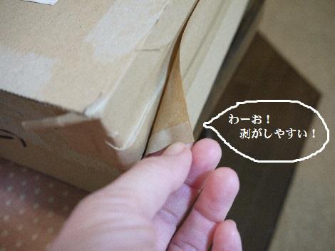 P1340352(1).jpg