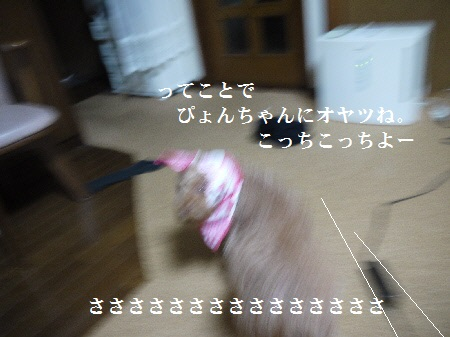 P1340756(1).jpg