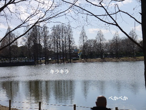 P1350050(1).jpg