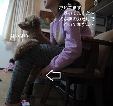 P1350418(1).jpg