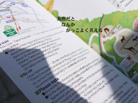 P1350942(1).jpg