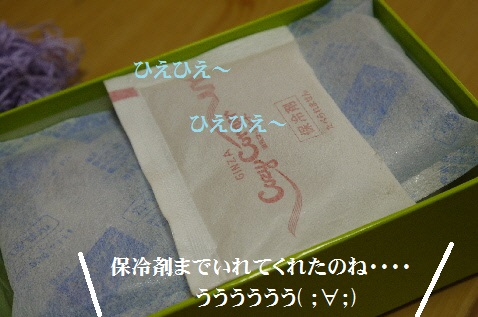 P1360250(1).jpg