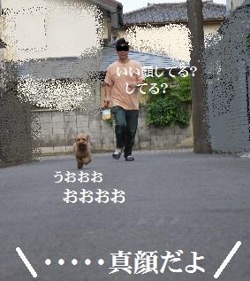 P1360473(1).jpg