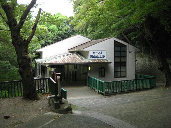 石清水八幡宮の猫と走井餅05