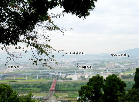 石清水八幡宮の猫と走井餅10