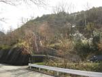 熊野古道・三瀬坂峠①-09