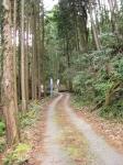 熊野古道・三瀬坂峠①-19