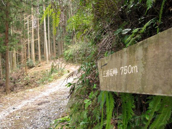 熊野古道・三瀬坂峠①-22