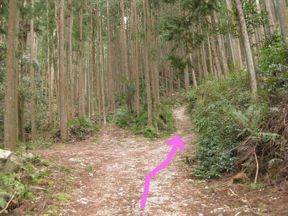 熊野古道・三瀬坂峠②-02
