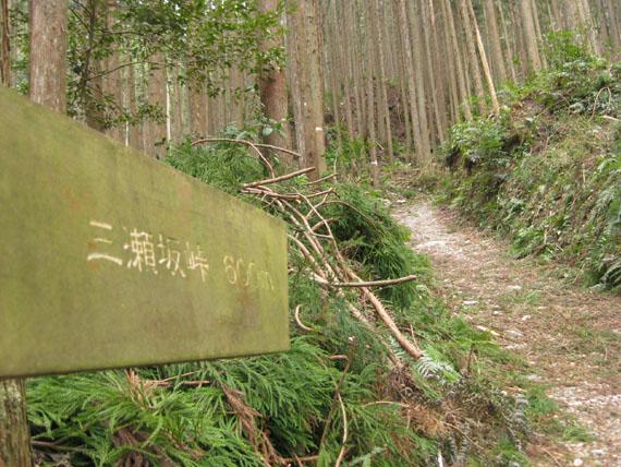 熊野古道・三瀬坂峠②-03