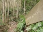 熊野古道・三瀬坂峠②-10