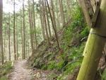 熊野古道・三瀬坂峠②-06