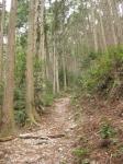 熊野古道・三瀬坂峠②-07