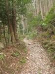 熊野古道・三瀬坂峠②-08