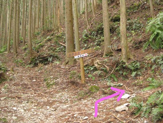 熊野古道・三瀬坂峠②-12