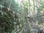 熊野古道・三瀬坂峠③-19