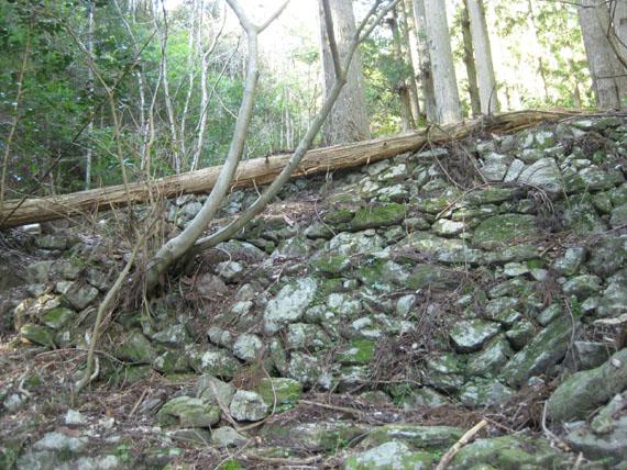 熊野古道・三瀬坂峠③-18