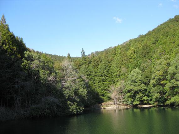 熊野古道・三瀬坂峠③-21