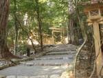 熊野古道・三瀬坂峠④-20