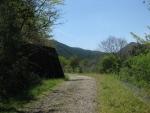 熊野古道・ツヅラト峠2-17