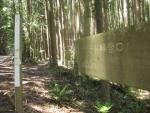 熊野古道・ツヅラト峠2-24