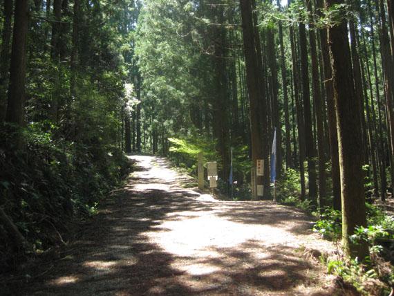 熊野古道・ツヅラト峠3-04