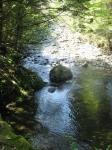 熊野古道・ツヅラト峠3-03