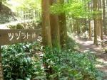 熊野古道・ツヅラト峠3-08